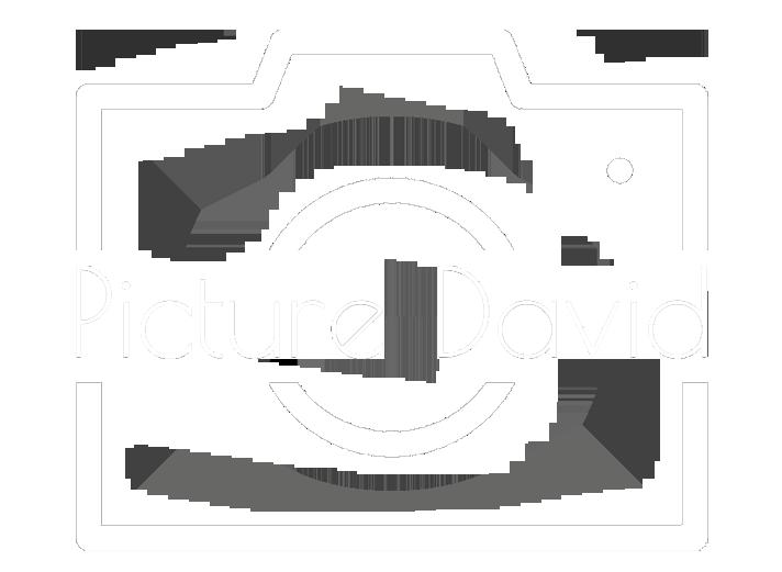 Picture David